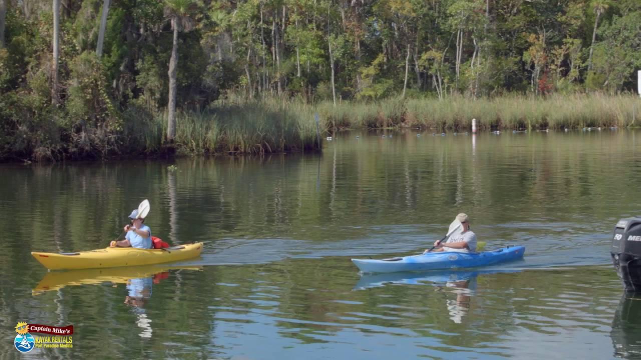 Captain Mike's Kayak Rentals | Manatee Tour and Kayak Adventure