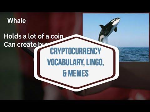 🤣 Cryptocurrency VOCABULARY, LINGO, & MEMES 🤑