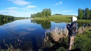 Вот это поворот. Рыбалка на спиннинг и донки. День рыбацкой экспедиции в 5 местах