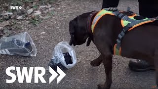 Die Supernasen - Polizeihunde-Teams im Einsatz | Mensch Leute BW