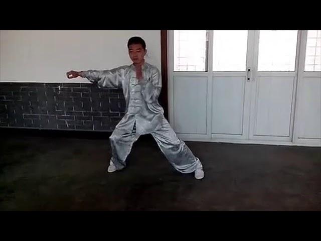 Chen Tian Qing - Tai Chi style Chen Xiaojia Yilu [陈氏太极拳小架 Taijiquan style Chen]