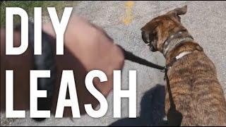 How To Pet Leash! : Diy
