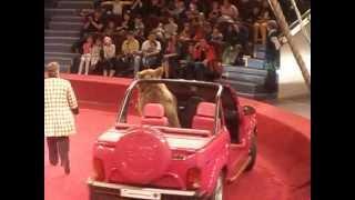 Медведь Шумахер цирк Никулина(зайдите на мой канал и посмотрите видео пожалуйста., 2013-05-05T15:35:54.000Z)