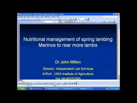 Nutritional management of spring lambing Merinos to rear more lambs