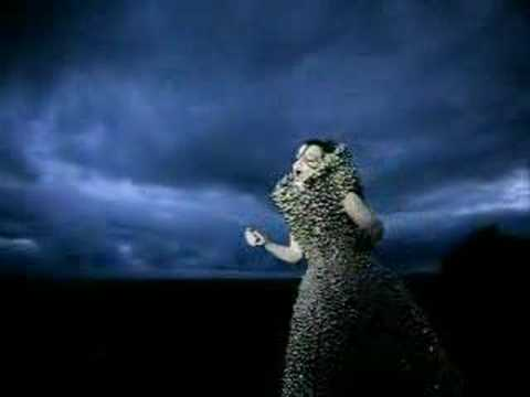 björk - who is it