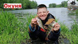 ОКУНЯ НА СПИННИНГ Ловля ОКУНЕЙ на вертушки Рыбалка на реке Жданка