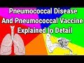 Pneumococcal disease and vaccine explained