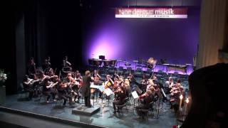 """Kammerphilharmonie Landesmusikgymnasium, """"Musica Viva"""" (Tschaikowsky), Festakt Koblenz 2011"""