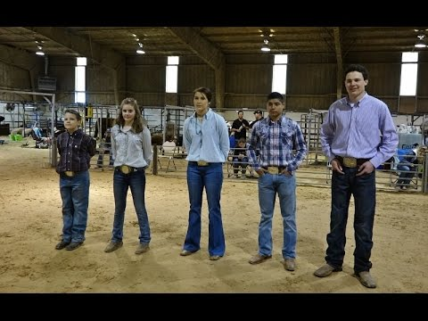 Bailey County Junior Livestock Show 2017