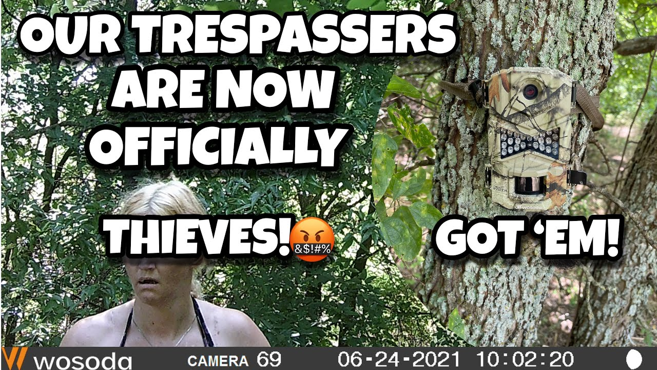 Download Our trespassers are now officially thieves! | The whole story with pictures | Got 'em!