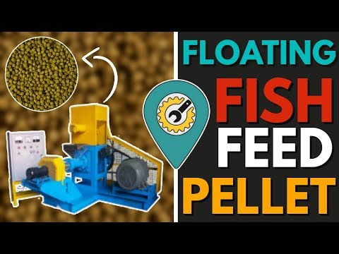 Floating Fish Feed Pellet Machine For Fish Farming - Call Now - 03436610100