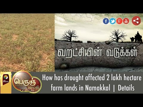 How has drought affected 2 lakh hectare farm lands in Namakkal | Details