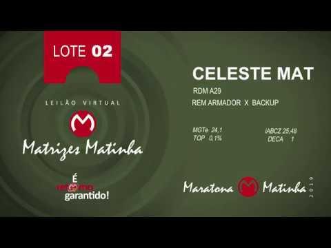 LOTE 02 Matrizes Matinha 2019