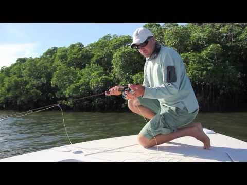 Saltwater Flyfishing Tips - Getting The Line Right