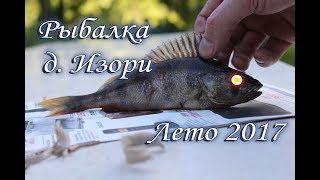 Рыбалка, коптим рыбу, д.Изори