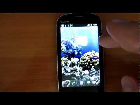 Самые красивые живые обои(аквариумы) для Андроид.