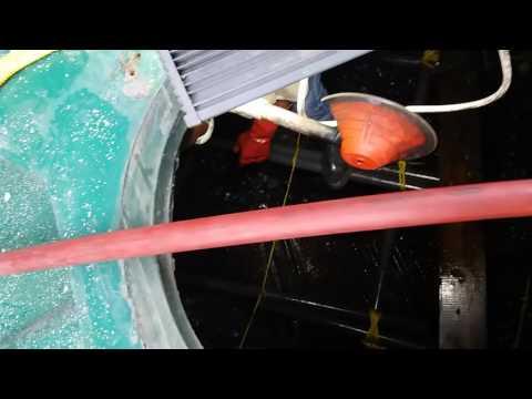 Biobox fiber filter repair