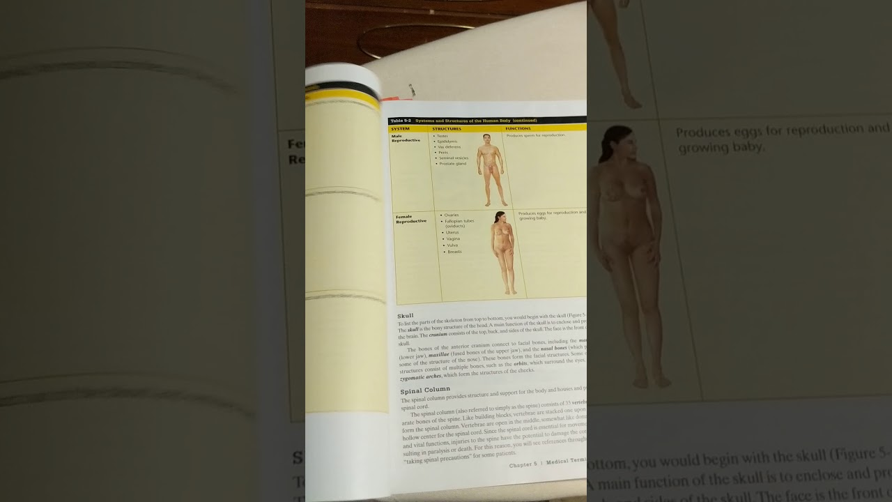 Tips for Passing Anatomy and Physiology - YouTube