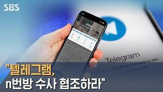 """""""텔레그램, n번방 수사 협조하라""""…단체 탈퇴 운동도 …"""