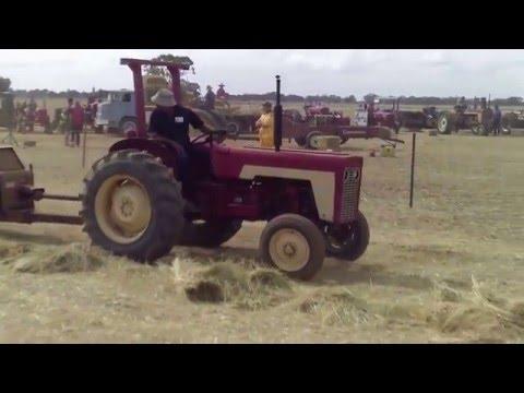 Thyra, Australia antique hay baling festival