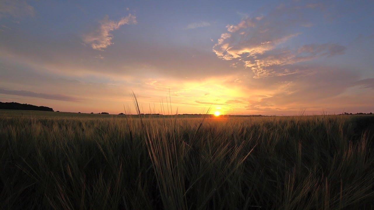Калининградская область. Красивый закат солнца