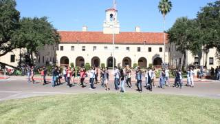 Texas A and M kingsville - flashmob 2016