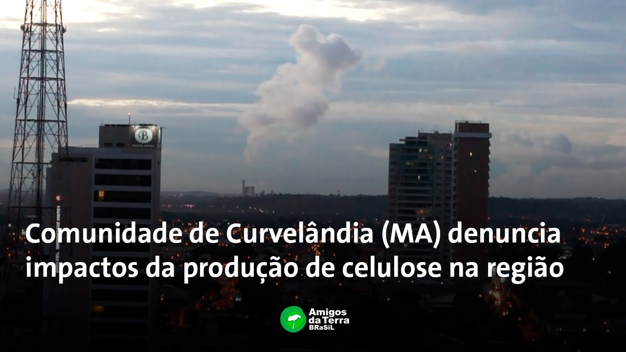 Denúncia de impactos da produção de celulose na região da Comunidade de Curvelândia (MA)