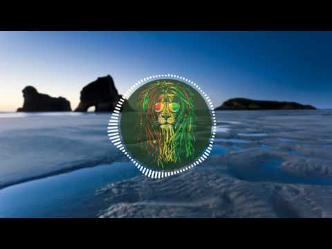 Lost Tribe Aotearoa - Irie (Remix) ft. Sir T