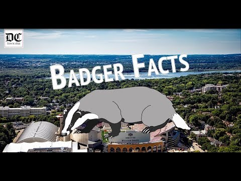 UW-Madison Badger Facts | The Daily Cardinal