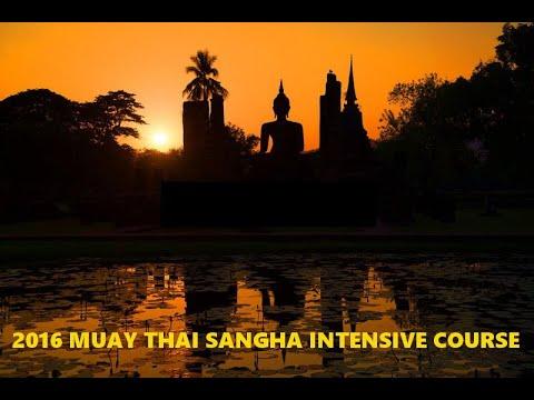 Muay Thai Sangha Intensive Course in Chiang Mai.
