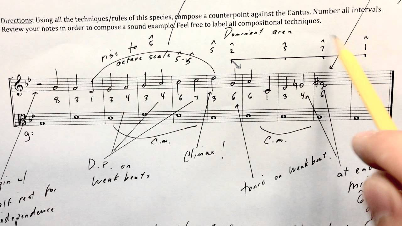 Species Counterpoint 2 in Minor: Tips