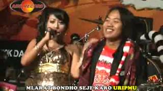 Download Mp3 Cindro - Indah Andira
