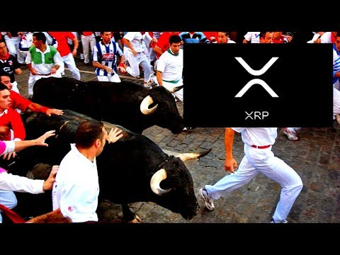 Ripple XRP: The Great Bull Run of 2019 Continues