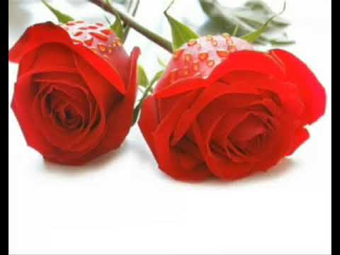 25 rosas Joan Sebastian