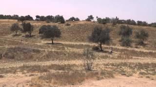 Disc Golf course Park Eshkol Israel - Hole 12