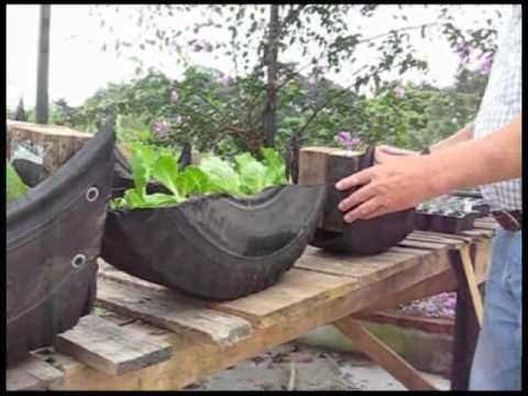 Tire Garden Experiment Youtube