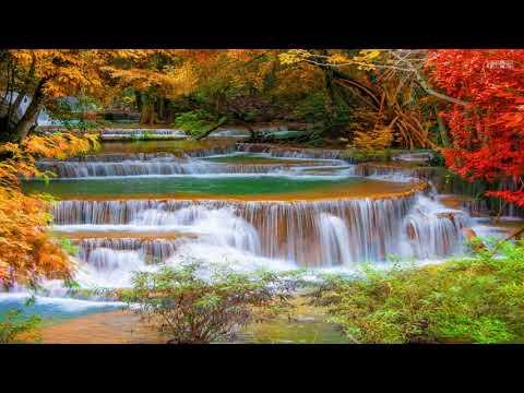 Top 70 Beautiful Autumn Waterfall in the World - YouTube