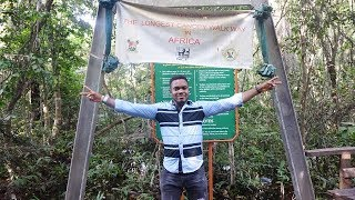 #Life In Lagos - Lekki Conservation Centre Tour! Longest Canopy WalkWay In Africa