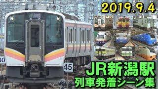 JR新潟駅(在来線) 列車発着シーン集 2019.9.4