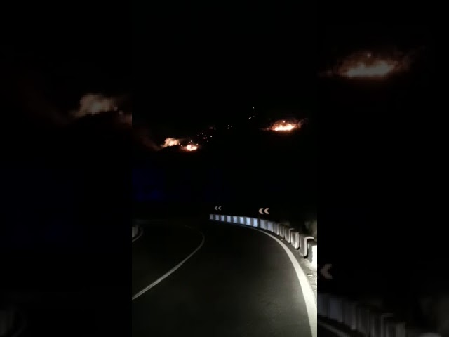 Se produce un incendio forestal en la zona de Mogán-El Draguillo en Gran Canaria.