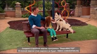 Dog with a Blog S01E04 Wingstan WEB DL Часть 18