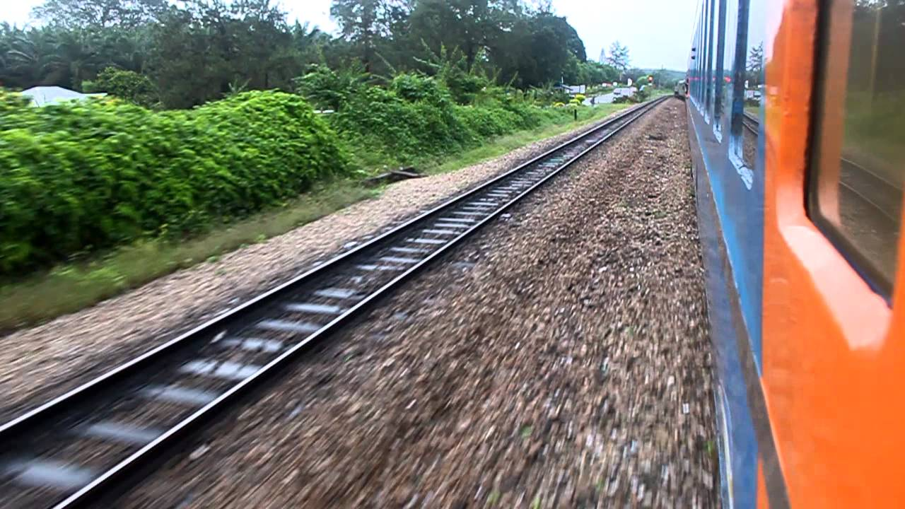 tiger train station surprises - 1280×720