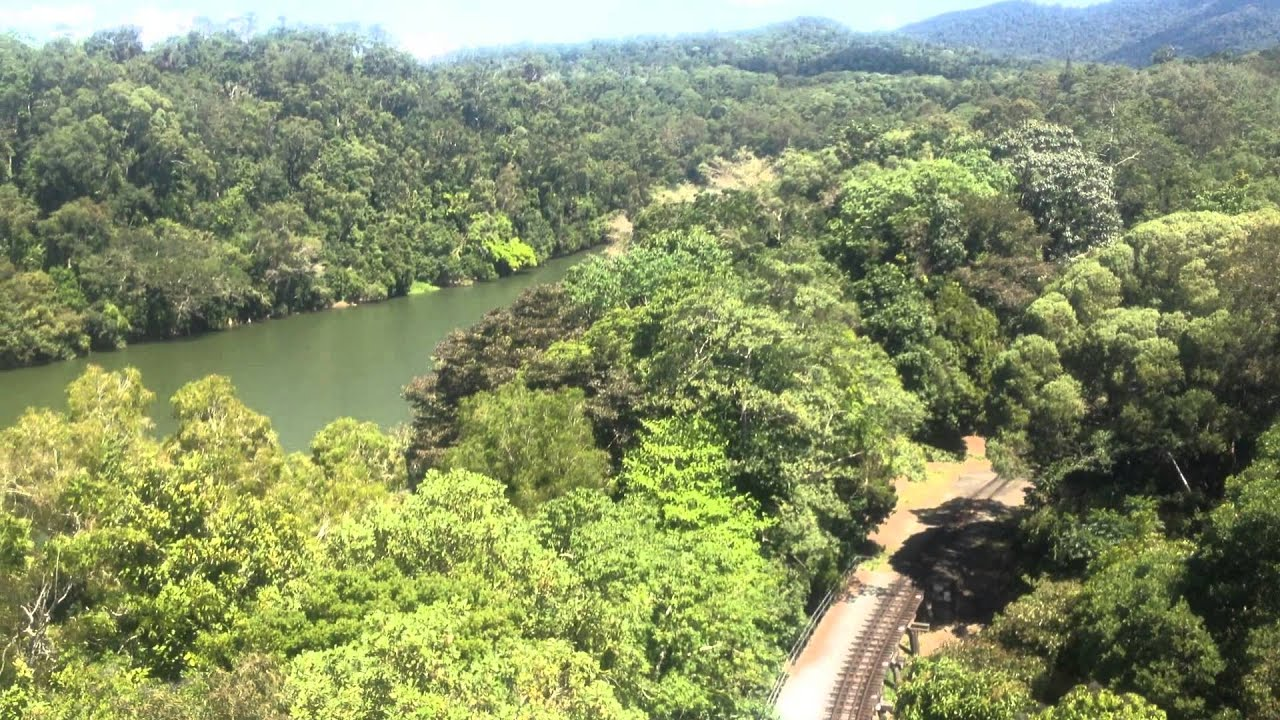 Sailbahn CairnsKuranda Regenwald Queensland Australien