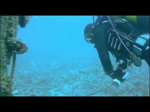 Buceo, submarinismo, Punta de la Mona, Almuñecar