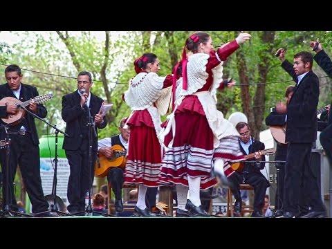 I Festival de Romería Virgen de las Viñas (Resumen) - Tomelloso