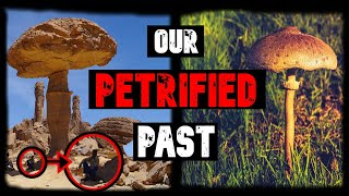 OUR PETRIFIED PAST!  (The Secret History of Earth)