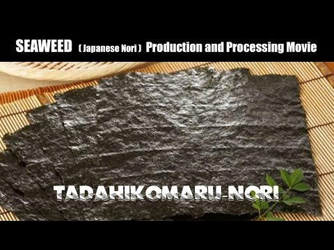 SEAWEED(Japanese Nori)Production and Processing Movie|By TAD