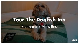 A Tour of the Dogfish Inn