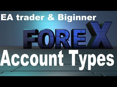 forex-account-types-best-for-beginner-&-ea-trader.-cent-account,-stranded-account,-online-currency