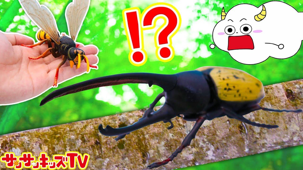 昆虫パズル!カブトムシやスズメバチやクワガタなど虫取り昆虫採集!組み立て遊び♪子供向け知育教育★サンサンキッズTV★